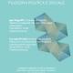 seminario pragmatista